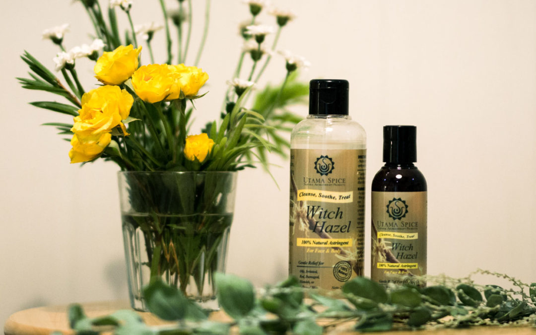 Benefits and Uses of Witch Hazel