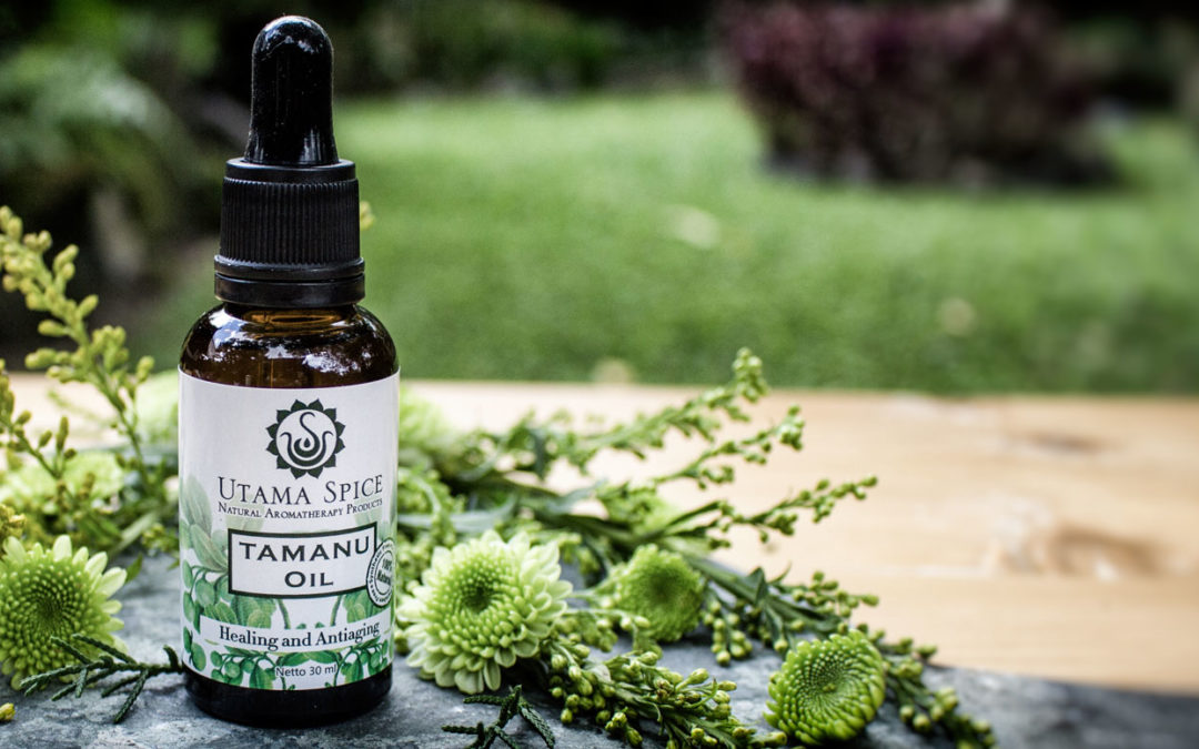 Tamanu Is The Miracle Oil You Haven't Heard Of Yet