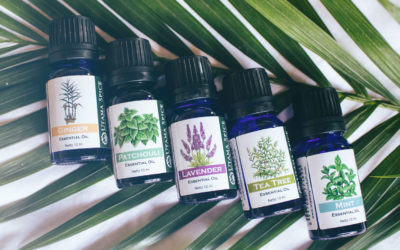 5 Essential Oils For Every Beginner