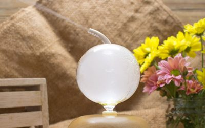 Why Use a Nebulizing Diffuser?