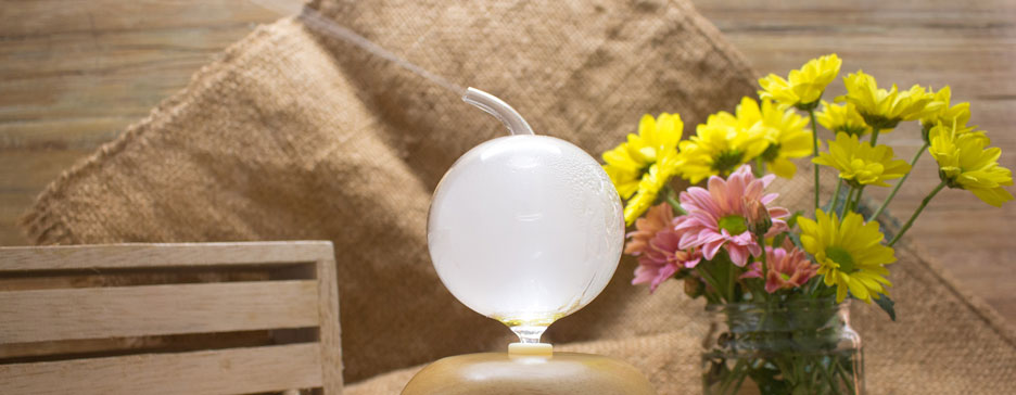 Essential Oil Diffusers: People Also Ask